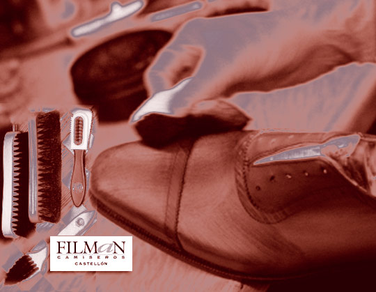 Consejos sobre limpieza de zapatos